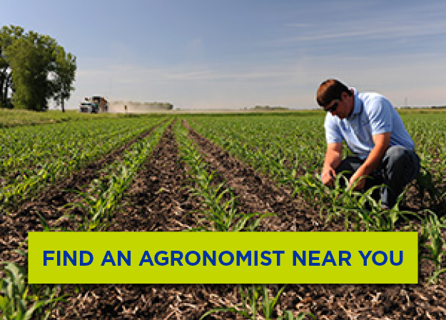 Find an Agronomy Expert Near You